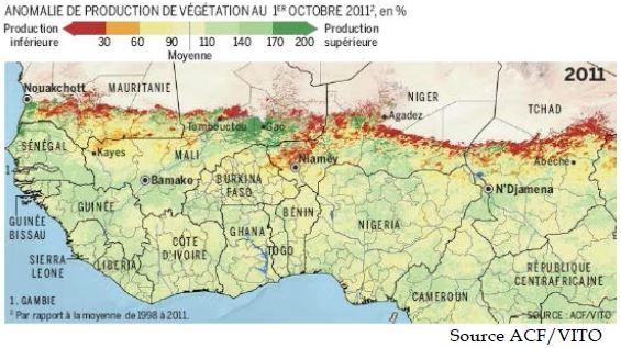 Nourrir l'Afrique, le défi des paysans de là bas, le Burkina - Page 2 Sorgho10