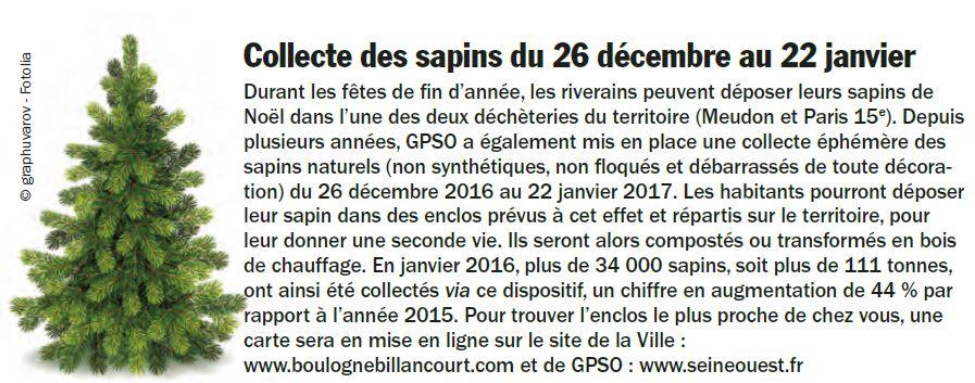 Collecte de sapins par Grand Paris Seine Ouest (GPSO) Clipb162