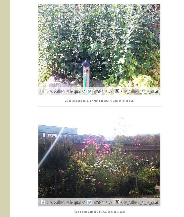 Jardins familiaux du Quartier du Pont de Sèvres Clipbo98