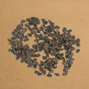 Les types de graines Sol_wg10