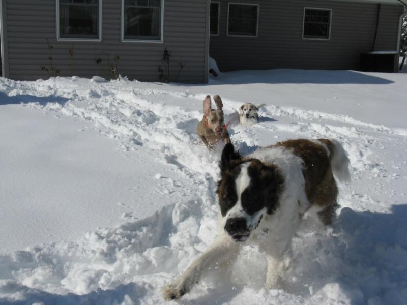 Fun in the snow! Img_1911