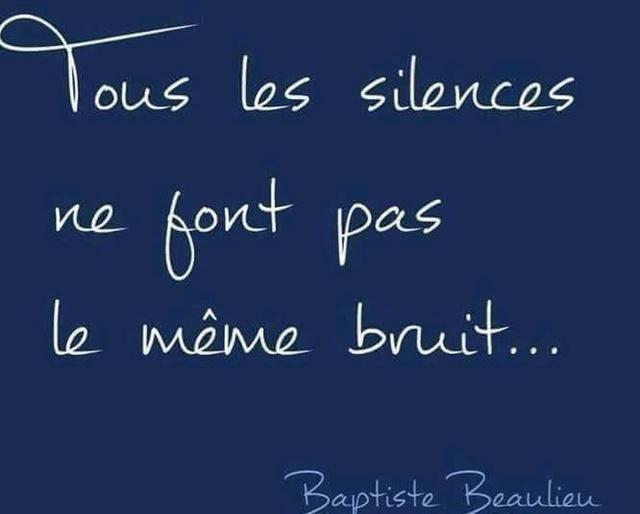Tous les silences ne font pas le même bruit Le_bru10