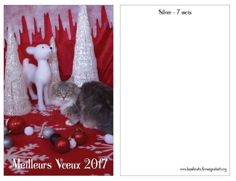 Cartes de voeux 2017 !! 15178111
