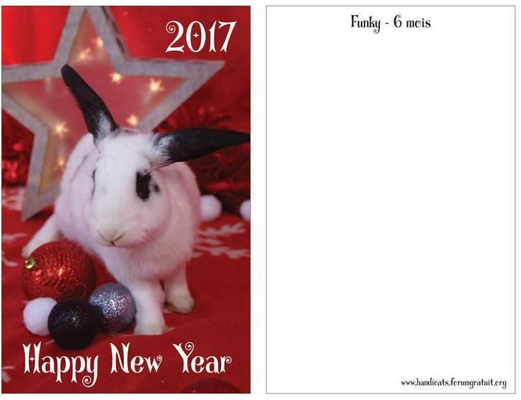 Cartes de voeux 2017 !! 15179211