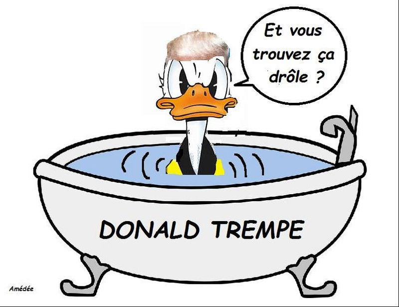 Donald (Trump) - Page 4 Donald10