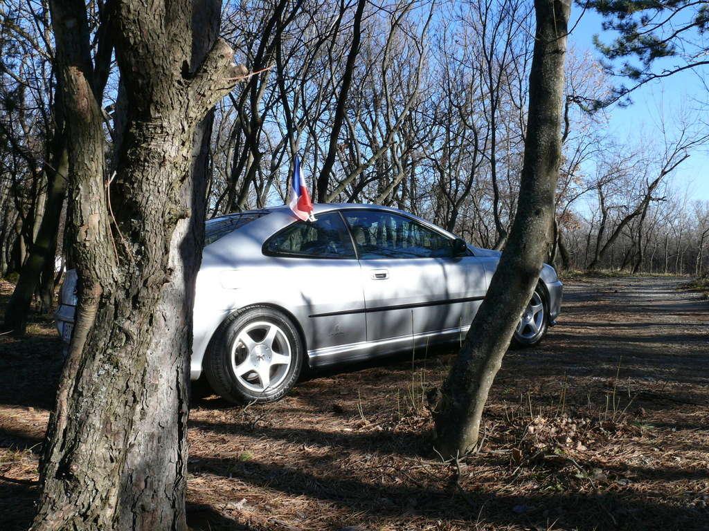 Mes voitures en photos STIHLMI16 ® - Page 3 P1060124