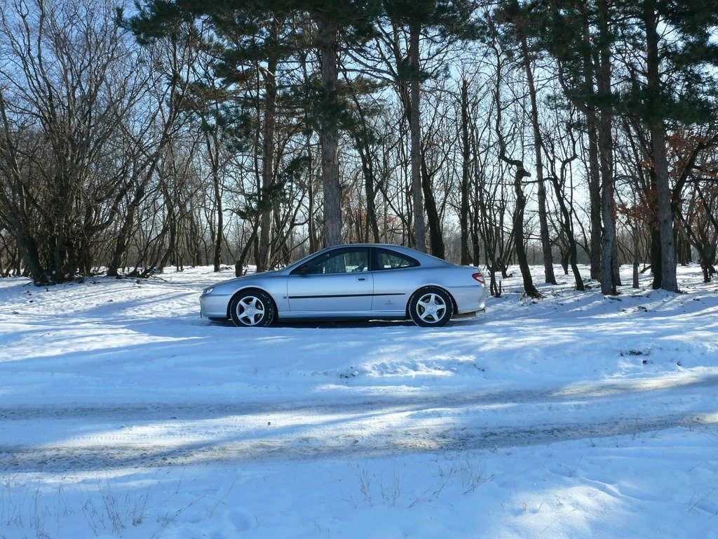 Mes voitures en photos STIHLMI16 ® - Page 3 P1060129