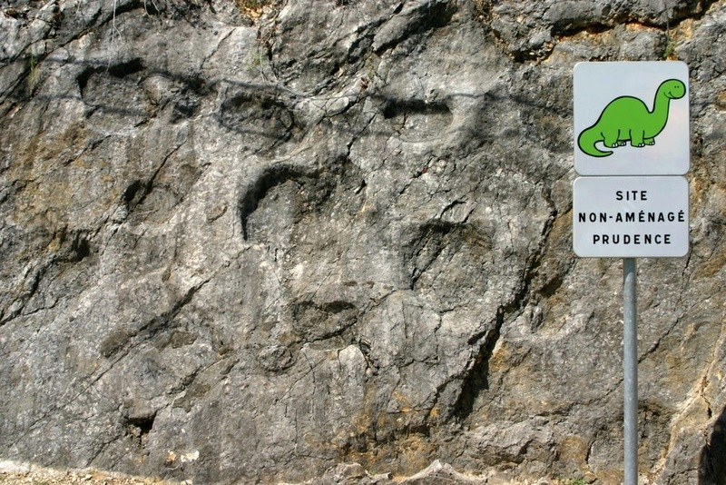 La plus longue piste de dinosaures, la Plagne, France Dino1b10