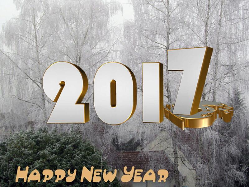 Bonne année et bonne santé Nouvel10