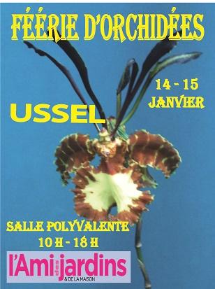 Exposition d'orchidées à Ussel les 14 et 15 janvier 2017 (Corrèze) Flyers10