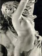 APOLLON ET DAPHNE/ LE BERNIN Compo110
