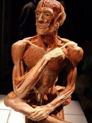Complainte du pauvre corps humain - Jules Laforgue Compla10