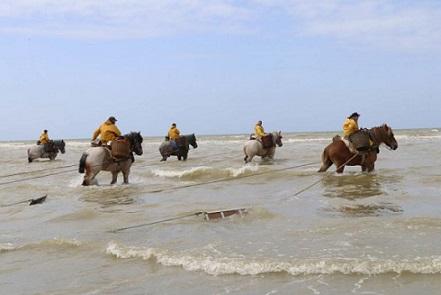 Les pêcheurs à cheval - Emile Verhaeren Les_pz10