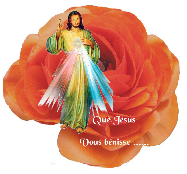 Adorateur de Jésus 2 - Page 2 Rose_o10