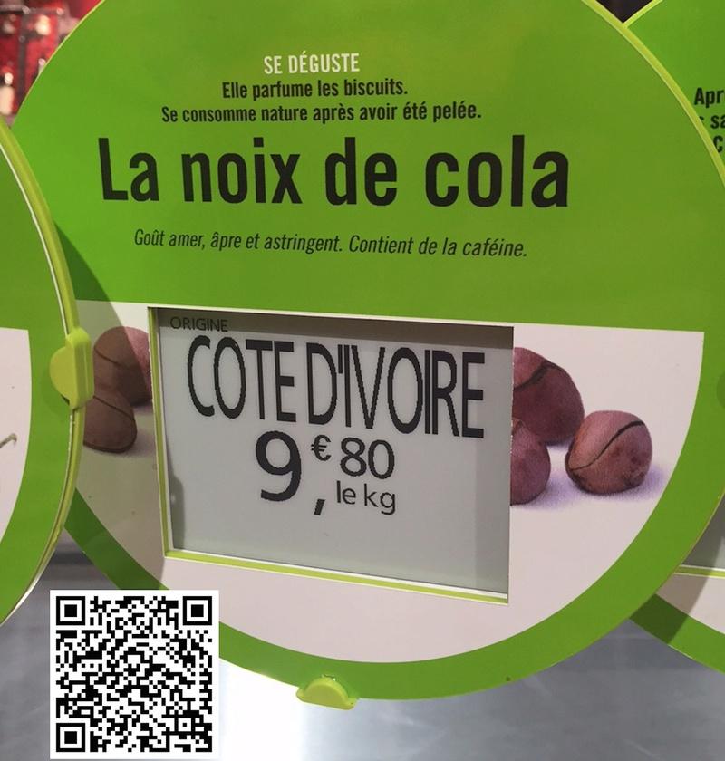 Culture ethnobotanique en France : Kolatier - Noix de Cola nitida, acuminata et gigantea. Prixx10