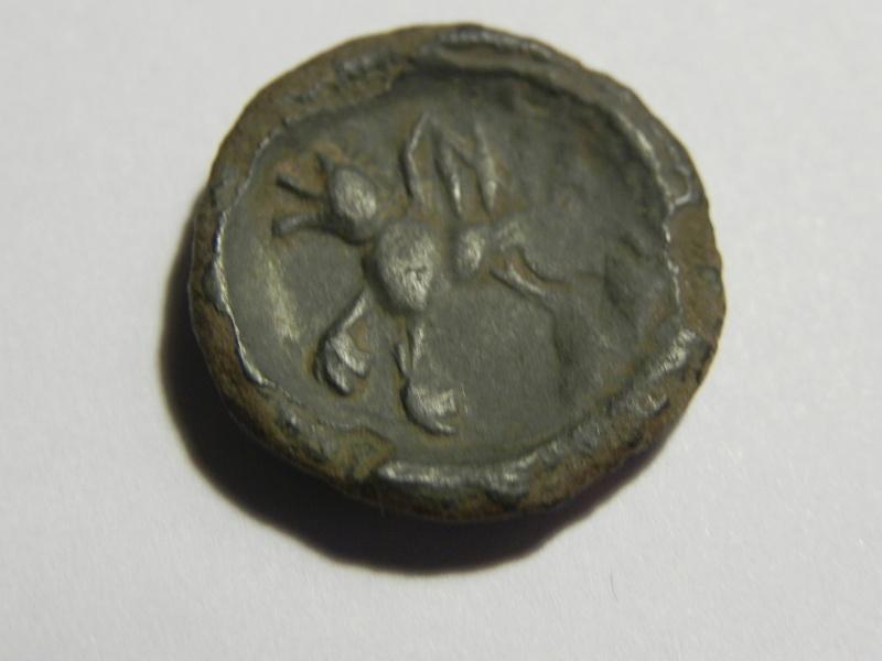Bronze Durocasse SNIA au loup ... Dscn3613