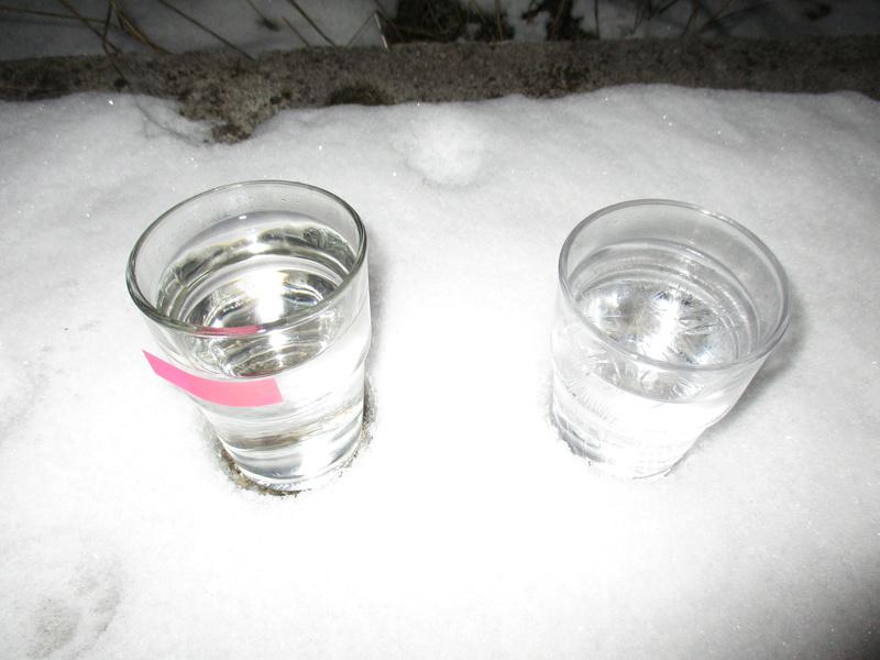 et si le froid arrivait, ou pas ... ?  Img_2112