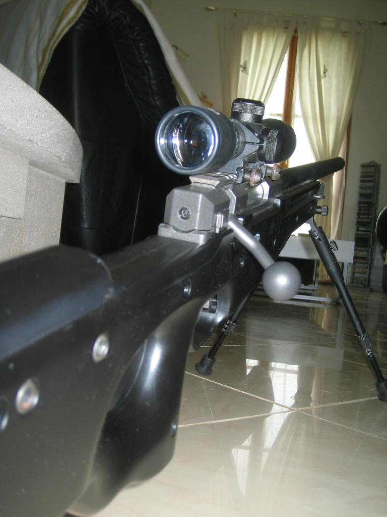 G36C + FAMAS (accessoires) + MAUSER SR + FUSIL A POMPE + SIG556 SHORTY  Photo_11