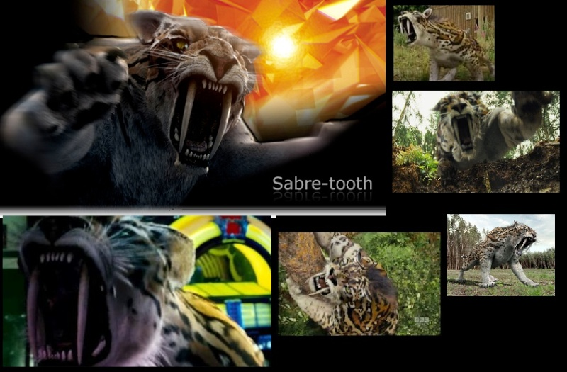 Bilder und Collagen Sabelz10