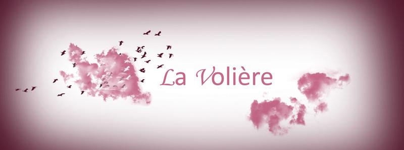 La Volière [Tricot/Couture] Banniy10
