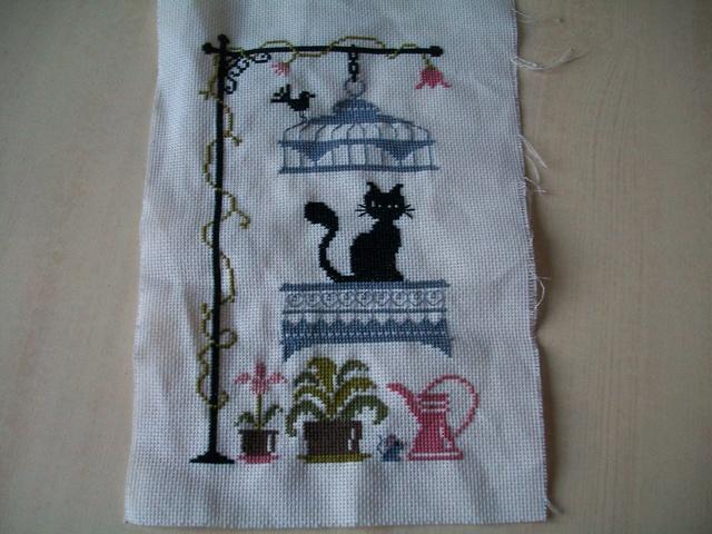 chat va pas chat de jardin privé - Page 20 100_3628