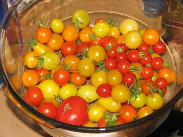 My harvest! Img_8334