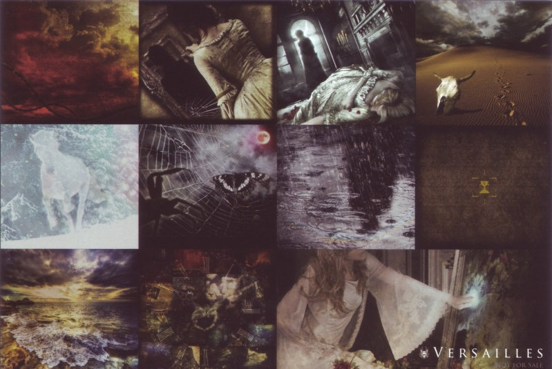Nouvel album intitulé 「Versailles」, sortie le 26 septembre. - Page 5 Carte_10