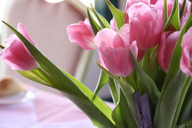 Nos amies les fleurs (Symbolisme) - Page 10 Tulip-10
