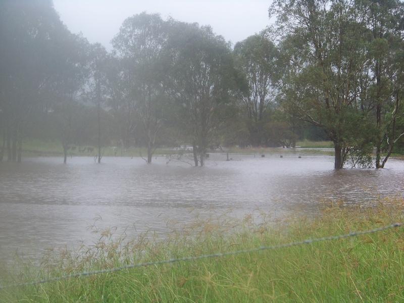brisbane floods 100_2212