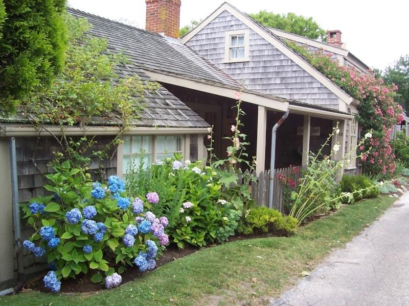 Nantuckett USA, l'art du jardin anglais. 100_7211