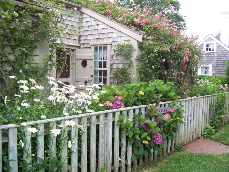 Nantuckett USA, l'art du jardin anglais. 100_7212