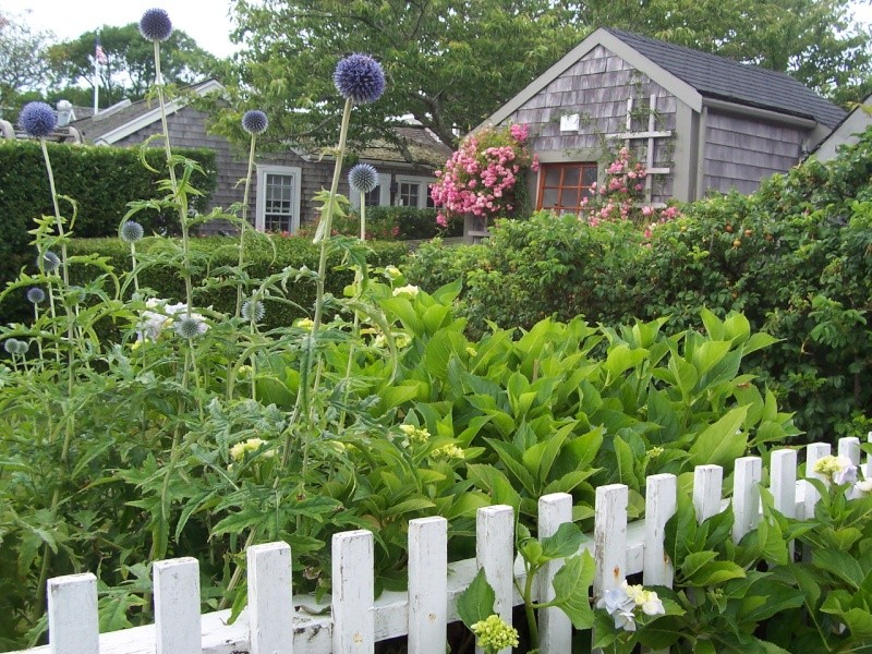 Nantuckett USA, l'art du jardin anglais. 100_7213