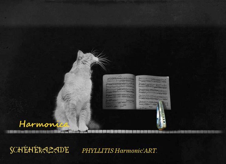 Shéhérazade par Phyllitis. Cat_an10