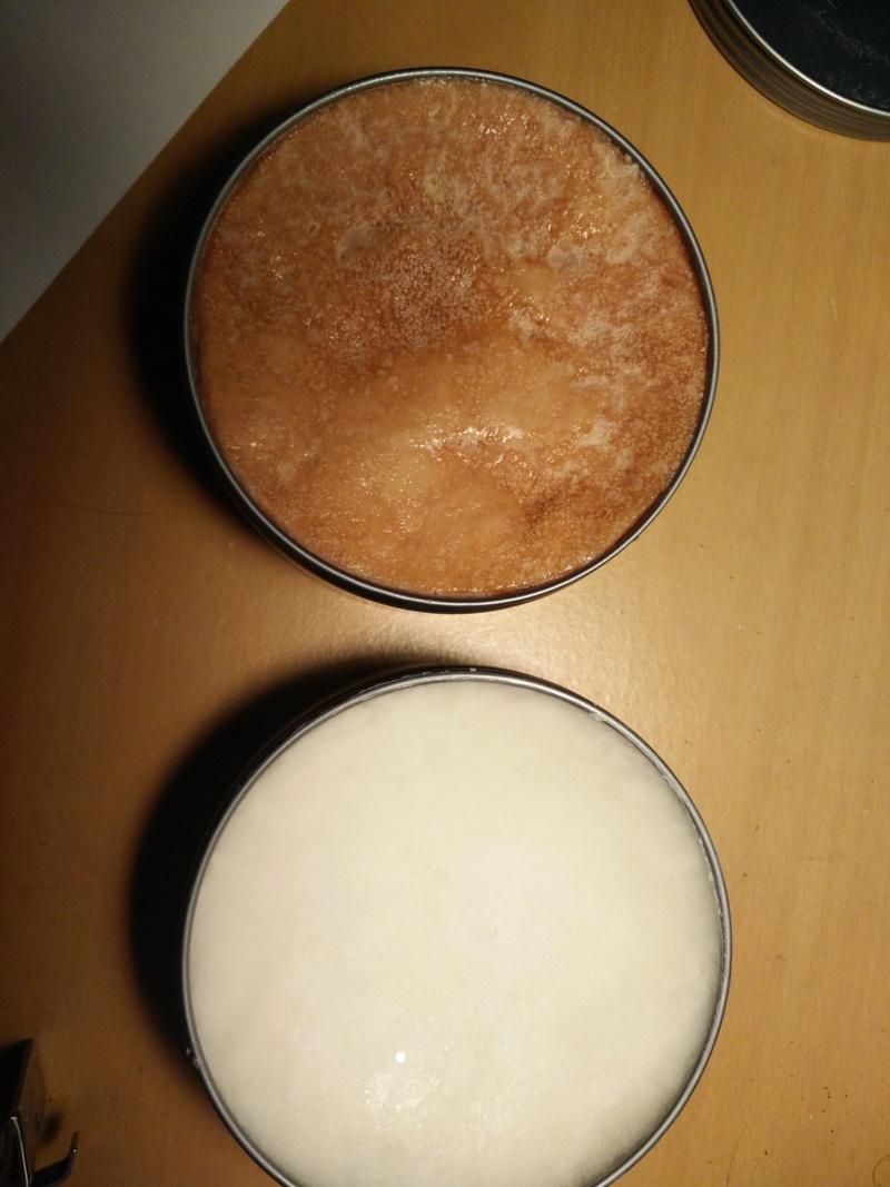 Forme des savons WSP Img_2010