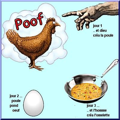 les poules, 5000 ans déjà ! Histoi10