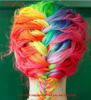 [Cheveux] Cheveux rainbow 29180110