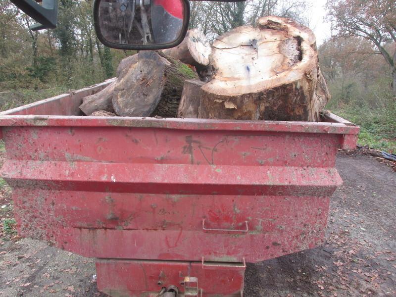 qui fait du bois ? Bois_s11