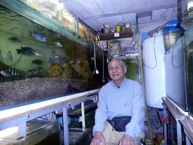 mes aquriums  et moi Paul0010