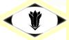 Escuadron 4°