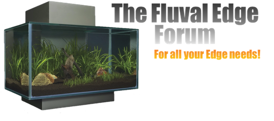 The Fluval Edge Forum