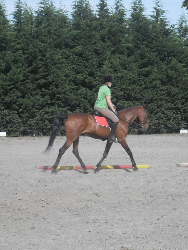 ♣ photos de vous à cheval - Page 2 Sdc13710