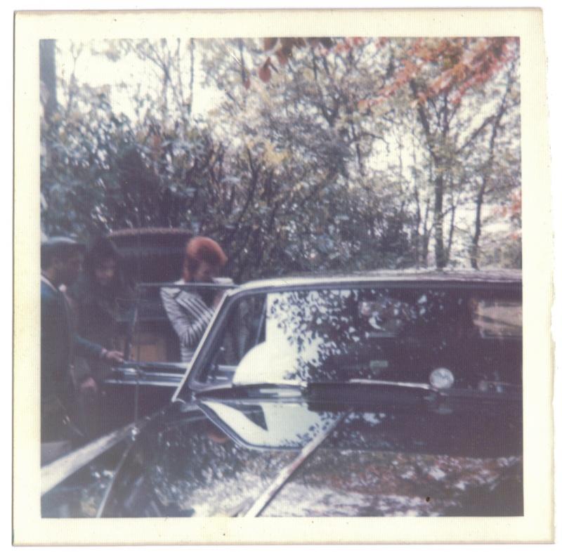 David Bowie pictures. 84328410