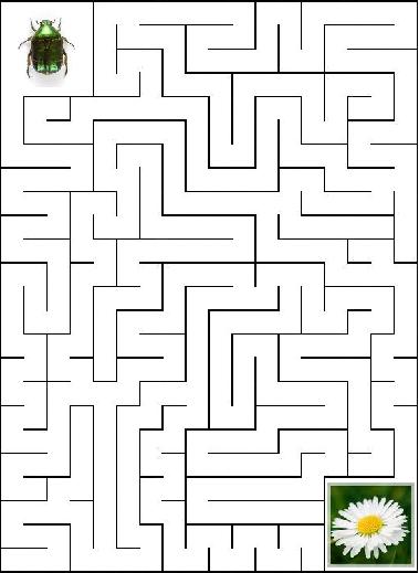 labyrinthe Sz_lfs10