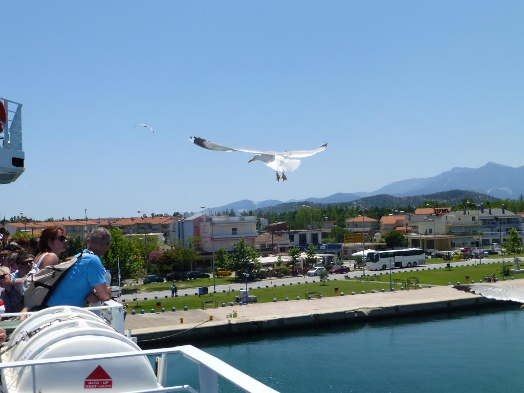 Greece, Island of Thassos, Golden Bay, 2013 02410