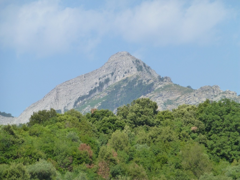 Greece, Island of Thassos, Golden Bay, 2013 08910