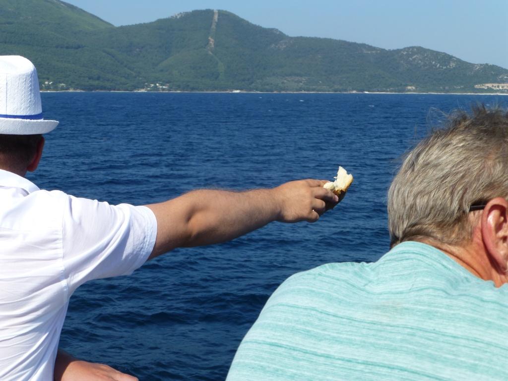 Greece, Island of Thassos, Golden Bay, 2013 114510