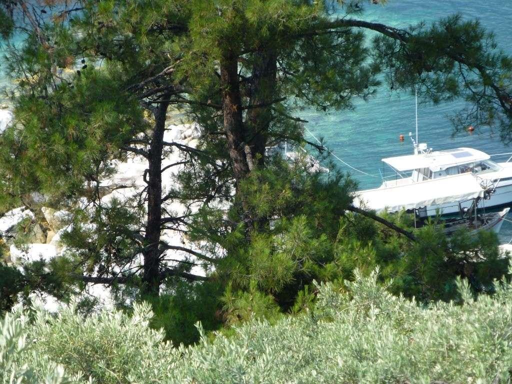 Greece, Island of Thassos, Golden Bay, 2013 47910