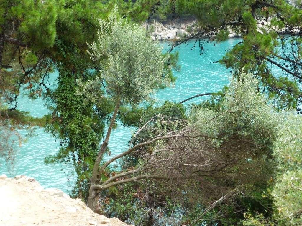 Greece, Island of Thassos, Golden Bay, 2013 49310