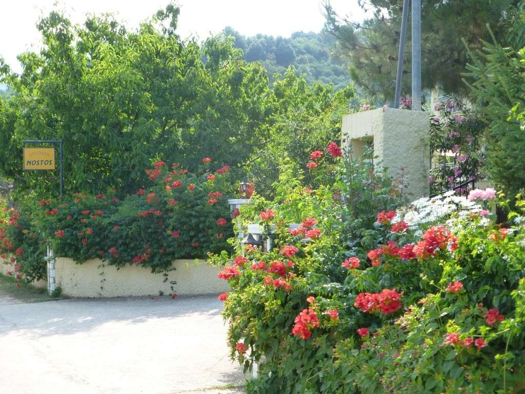 Greece, Island of Thassos, Golden Bay, 2013 53110