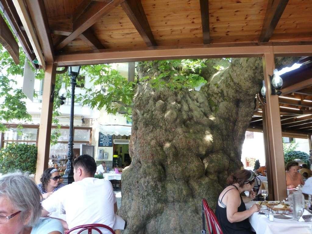 Greece, the Island of Thassos, Golden Beach, MiniTrain trip 62311